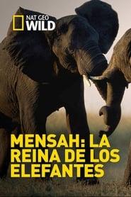 Elephant Queen (1970)