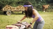 The Amazing Race saison 27 episode 3
