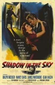 Affiche de Film Shadow in the Sky