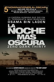 Watch Zero Dark Thirty Online Movie