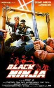 Ninja Silent Assassin (1987)
