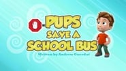 Pups Save a School Bus