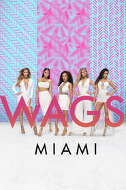 WAGS Miami streaming vf poster