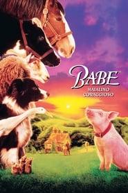 Babe - Maialino coraggioso (1995)