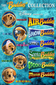 Disney Buddies Collection Poster