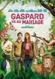Gaspard at the Wedding 2018