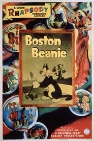 Boston Beanie