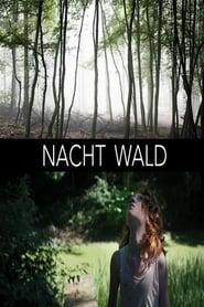 Nacht Wald