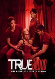 True Blood Saison 4 en streaming