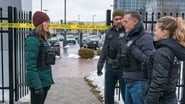 Chicago P.D. Season 6 Episode 17 : Pain Killer