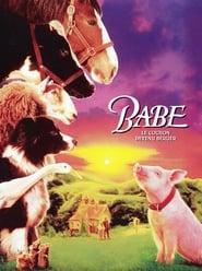 Watch Babe Online Movie