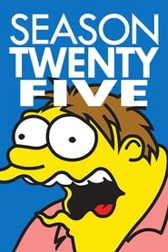 The Simpsons Season 21 Season 25