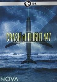 Crash of Flight 447 (2010)