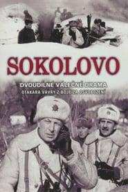 bilder von Sokolovo