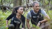 NCIS: New Orleans saison 2 episode 8