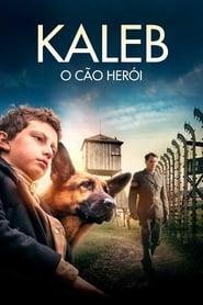 Kaleb: O Cão Herói – Dublado