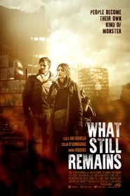 What Still Remains (20162018)