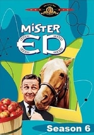 Streaming Mister Ed poster