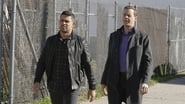 NCIS saison 14 episode 17