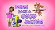 Pups Save a Good Mayor