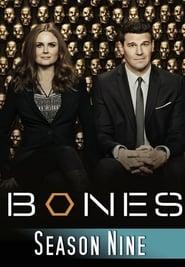 Bones - Season 1 Season 9