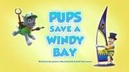 Pups Save a Windy Bay