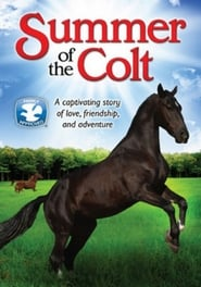 Photo de Summer of the Colt affiche