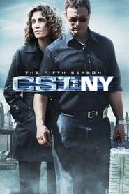 CSI: NY saison 5 streaming vf