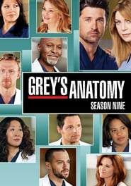 Grey's Anatomy - Season 13 Episode 6 : Roar Season 9