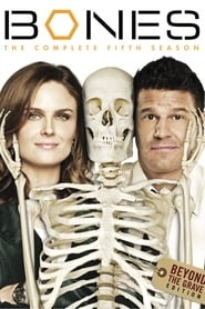 Bones - Season 9 Episode 17 : The Repo Man in the Septic Tank Season 5