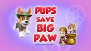 Pups Save Big Paw