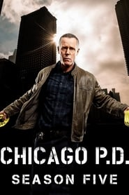 Chicago P.D. saison 5 streaming vf poster