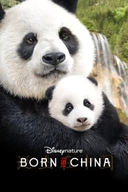Born in China movie poster