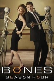 Bones - Season 9 Episode 21 : The Cold in the Case Season 4