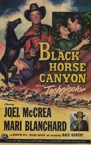 Affiche de Film Black Horse Canyon