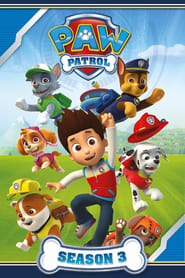 Paw Patrol - Specials Season 3