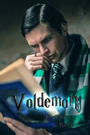 Voldemort : les origines de l'héritier