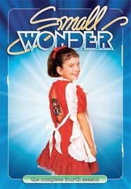 Small Wonder streaming vf poster