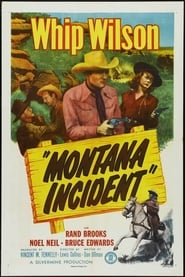 Montana Incident Film Plakat