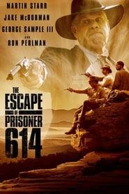 The Escape of Prisoner 614 (2018)