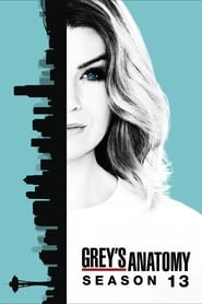 Grey's Anatomy streaming saison 13 poster