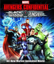 Avengers Confidential: Black Widow & Punisher poster