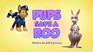 Pups Save a Roo