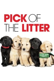 Pick of the Litter (2018) Watch Online Free