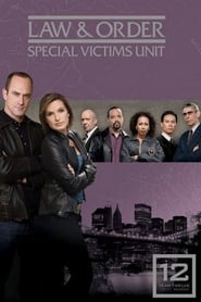 Law & Order: Special Victims Unit Season 15 Season 12