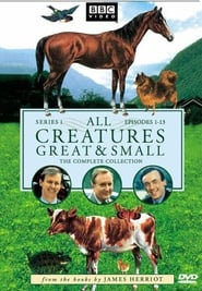 All Creatures Great and Small saison 1 streaming vf