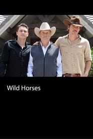 Wild Horses locandina