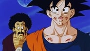 Give Me Energy! We'll Make a Huge Spirit Bomb!!