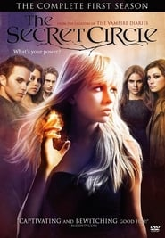 Streaming The Secret Circle poster