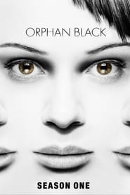 Orphan Black 1º Temporada (2013) Blu-Ray 720p Download Torrent Dub e Leg